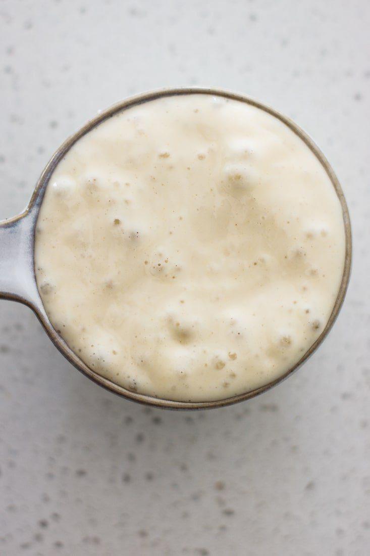 active all purpose flour sourdough culture with bubbles on top