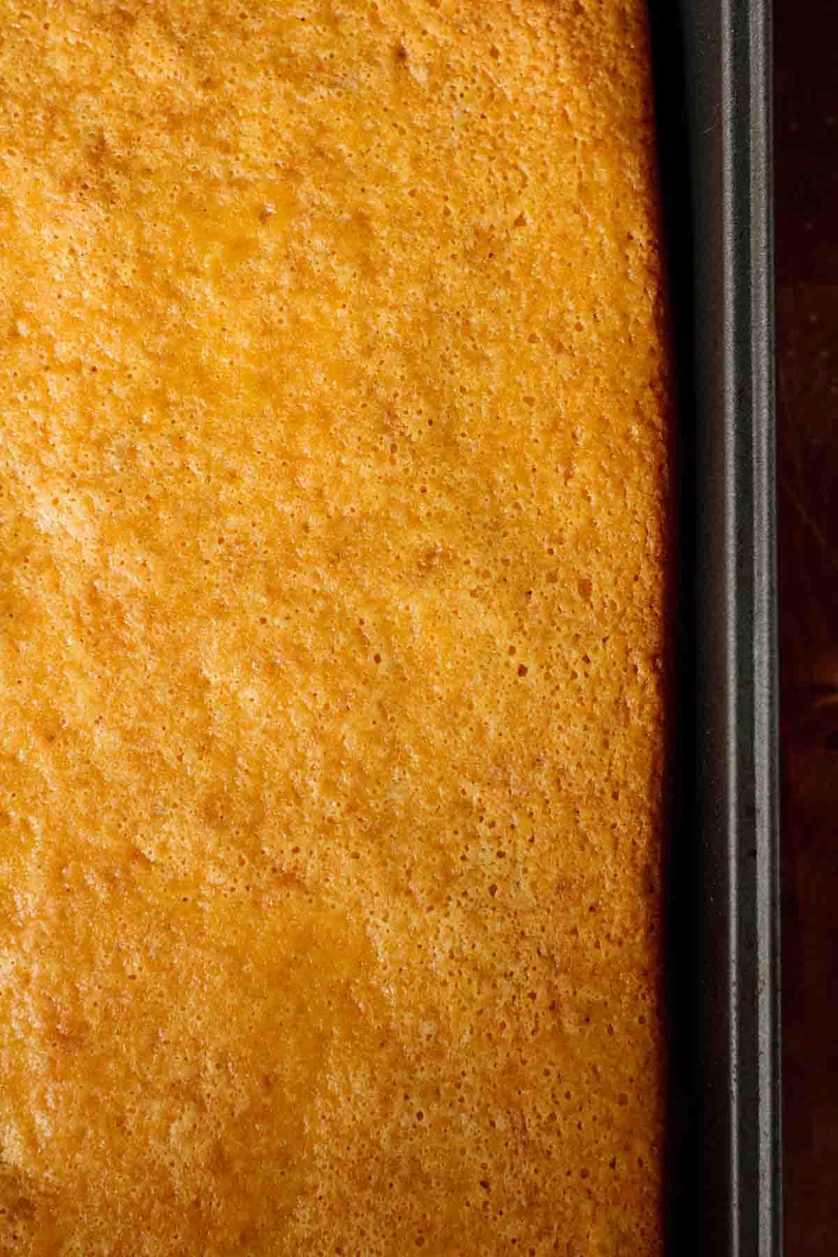 Freshly baked cake still on sheet pan.