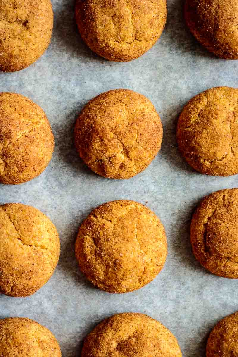 just baked pumpkin snickerdoodles on tray