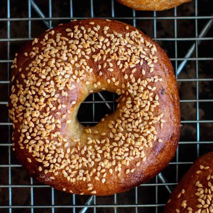 golden brown sourdough bagel with sesame seeds
