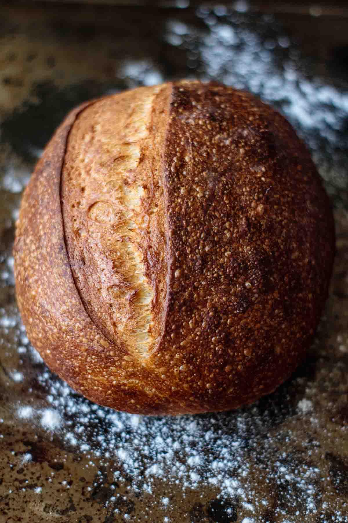 golden sourdough artisan bread baked without a Dutch oven