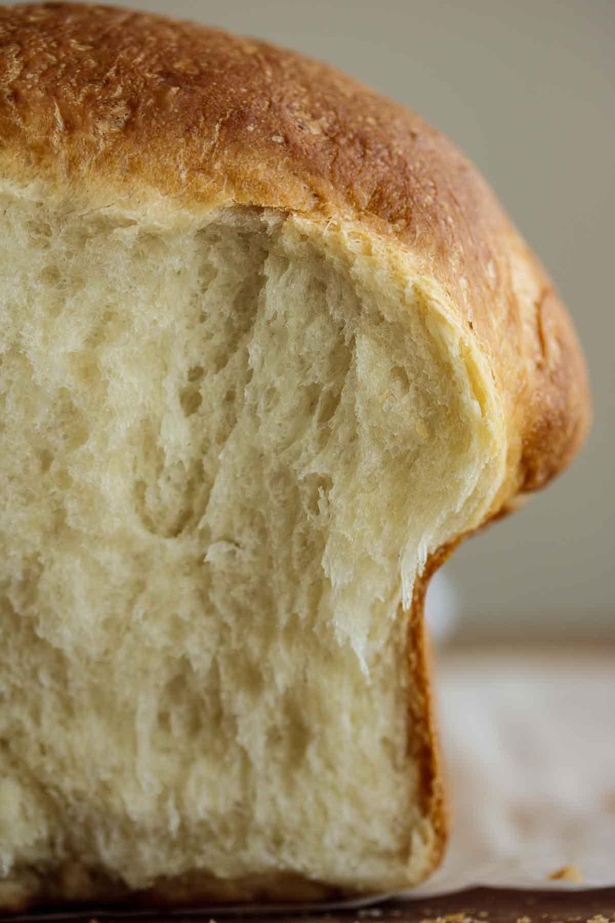 Close up on bread crumb.